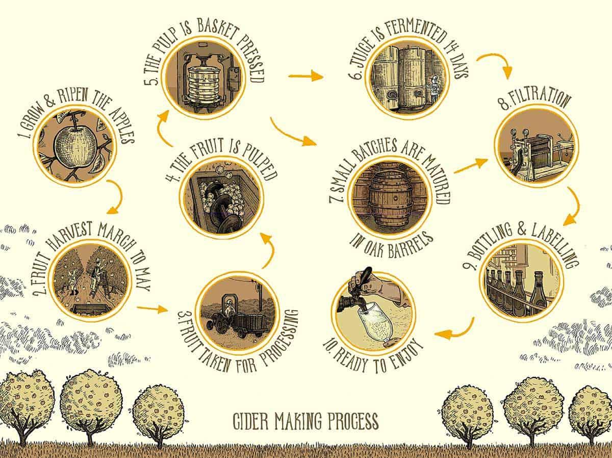 produzione sidro vecchia maniera con invecchiamento nelle botti di legno