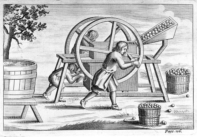 Spremitura delle mele da sidro nel 17° secolo